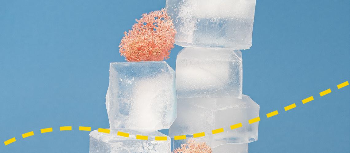 Newsletter-Icebreaker